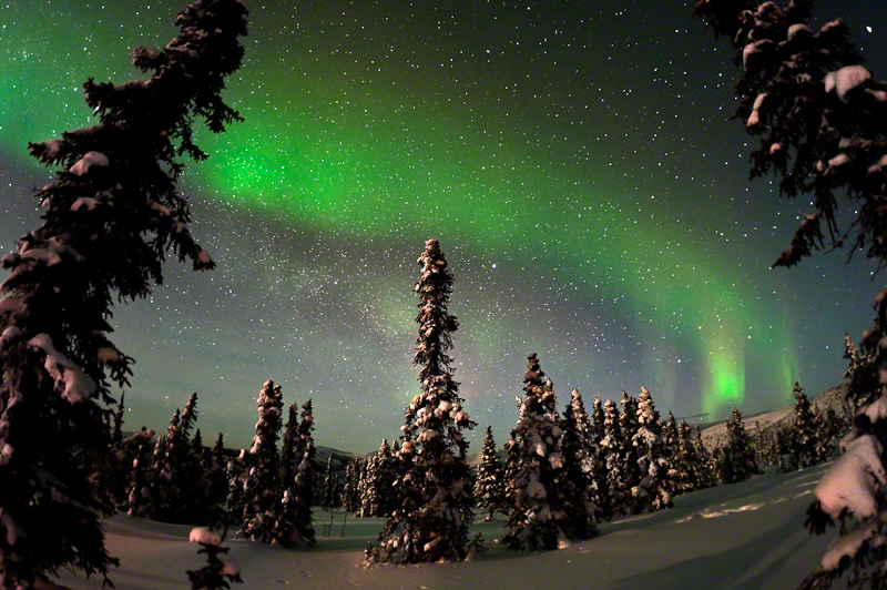 Painting The Sky With The Northern Lights