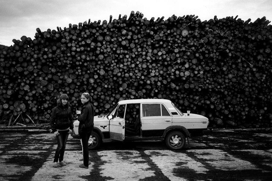 toropets_lumber