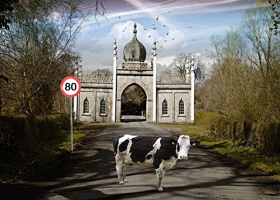 12.Sacred Cow
