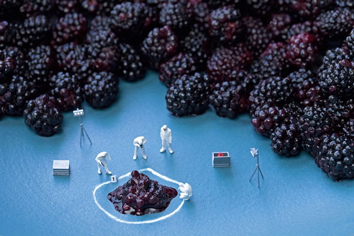 blackberry CSI 900px by Christopher Boffoli