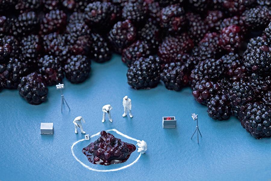 blackberry CSI 900px by Christopher Boffoli
