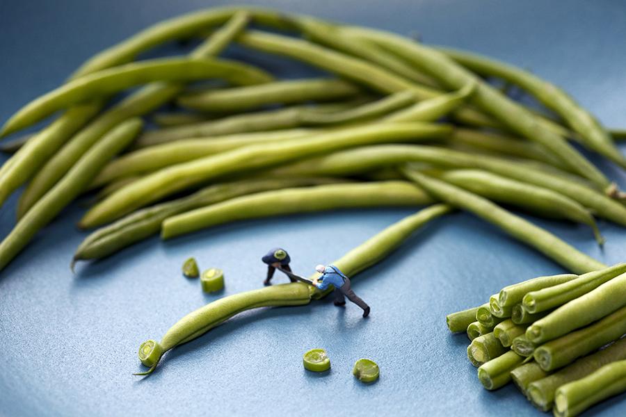 green bean sawmill 900px