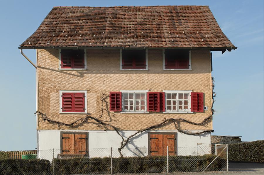 kathrarina_fitz_dornbirnerhouses3