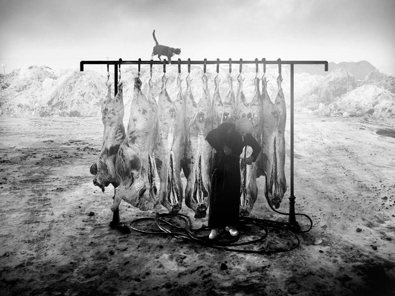 Butchers (10)