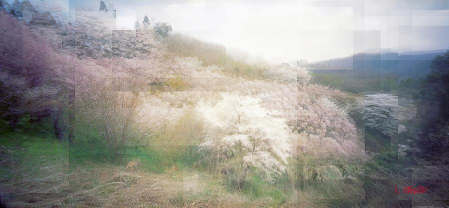 Fukushima invisible pain06