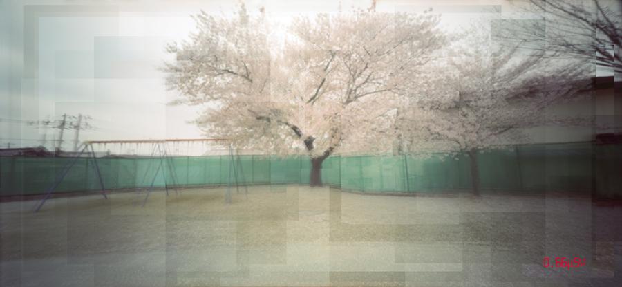Fukushima invisible pain07