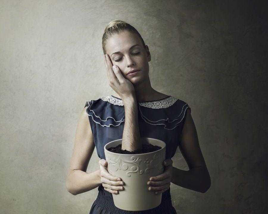 Dream Series by Michal Zahornacky