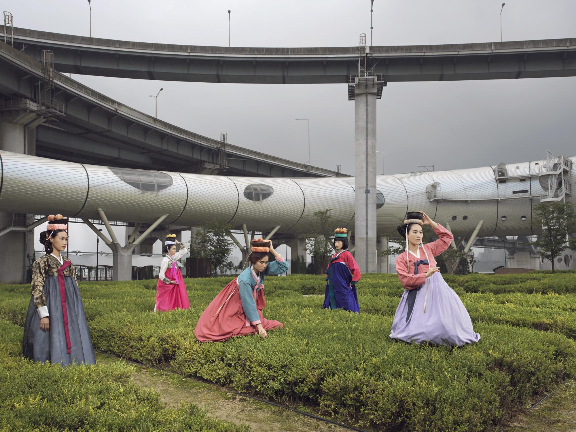 Korea_Harvest