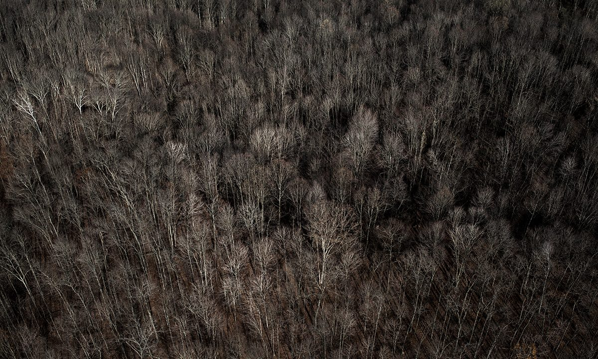 Morten Germund – Bring me home, Ohio