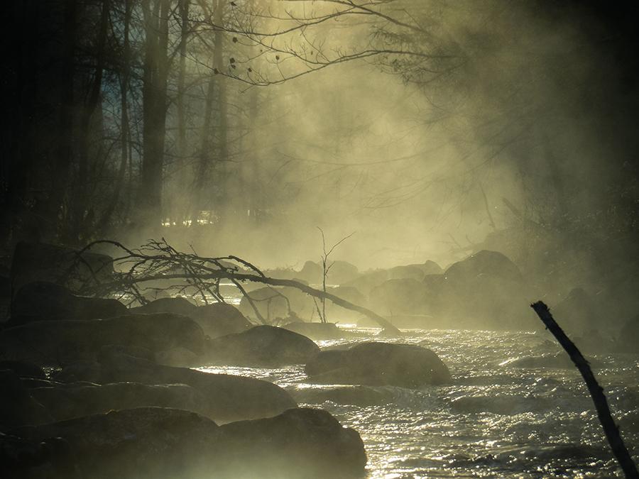 Morning Mood-Tom Fallon Photography