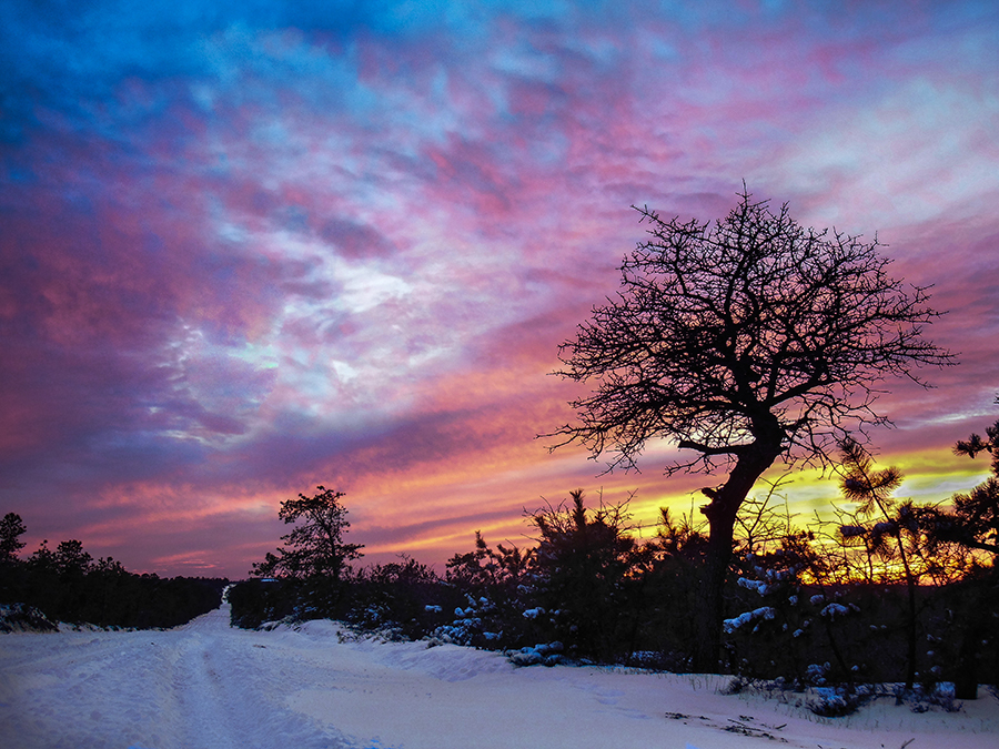 Waking-Tom Fallon Photography