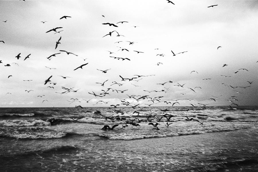 17.10.2009 Morze