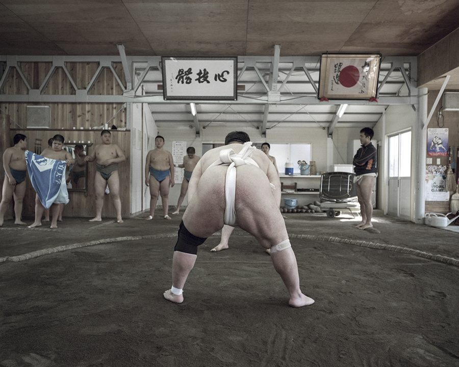 Sumo School by Daniel Ali