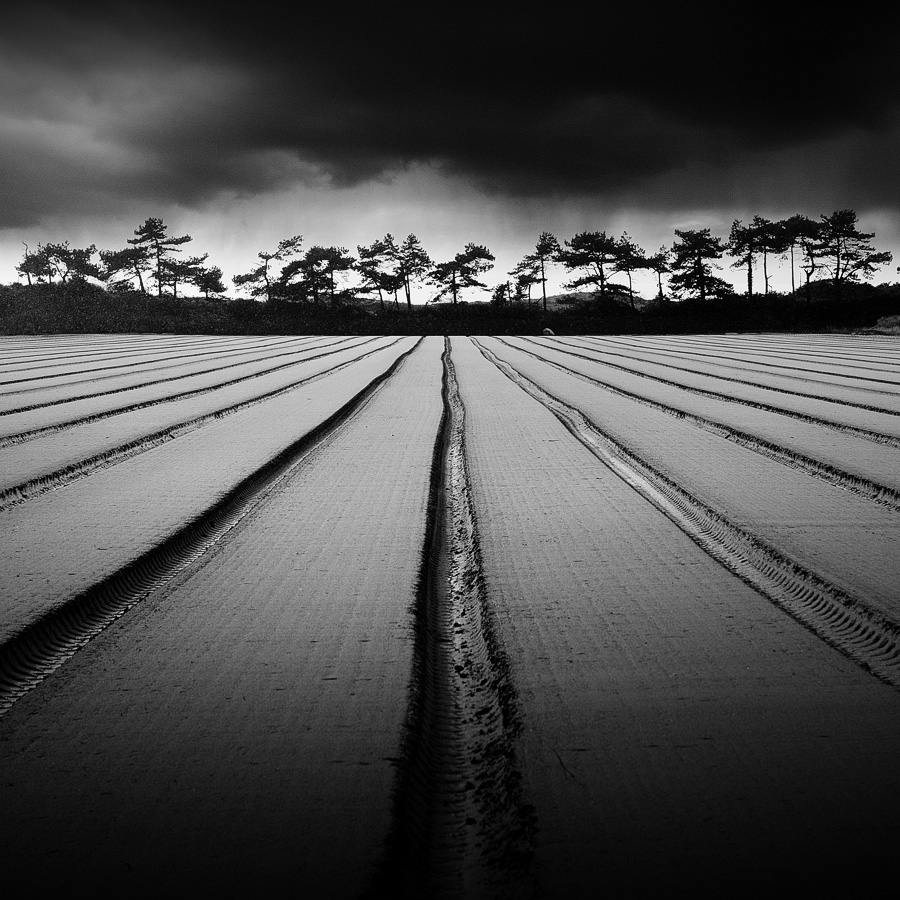 Walk_The_Line-Nicolas_Evariste