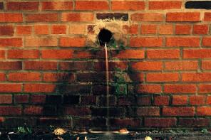07_Miska_Draskoczy_Water_Hole