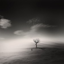 21 George Christakis