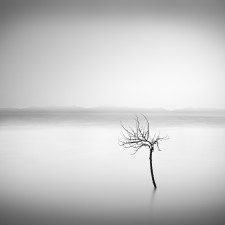 _DSC1411 George Digalakis