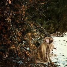 Richness In Winter Sarah Allegra