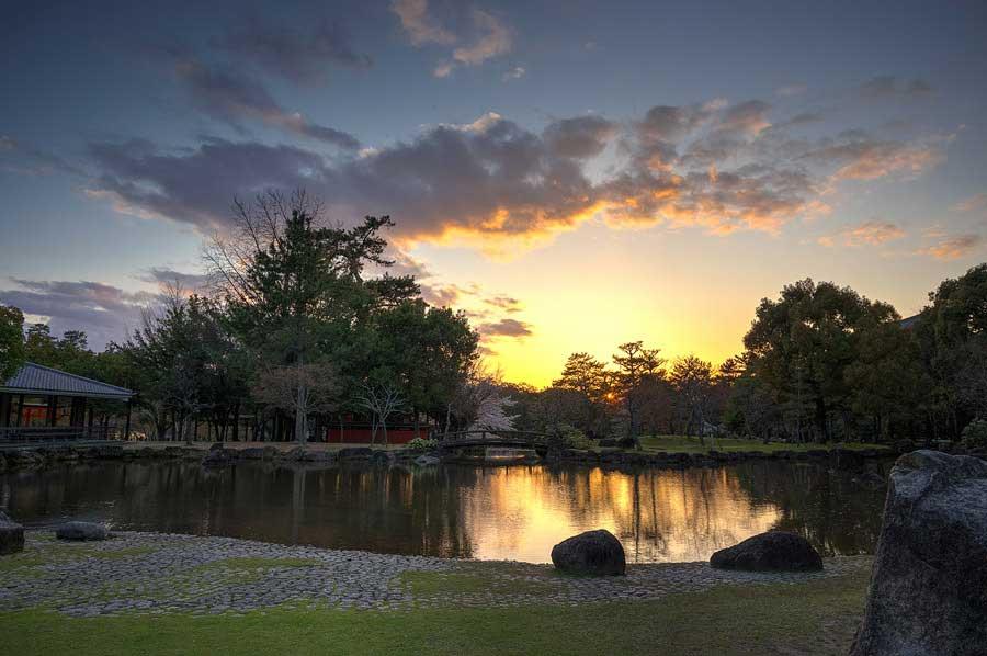 08 Sunset on the pond