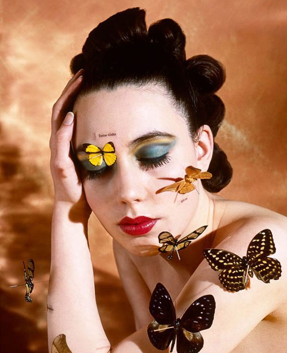 The Butterfly Collector by Alva Bernadine