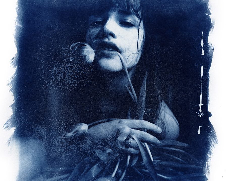 Cyanotypes by Ruediger Beckmann