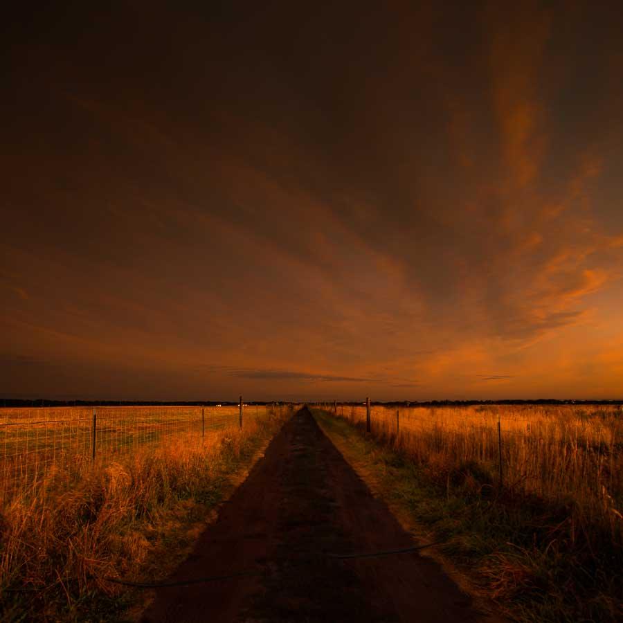 12_B.Avakian_Road Through the Plains_ Bob Avakian