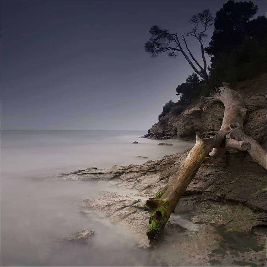 Seascape : Michel Lecocq 09LECOCQ
