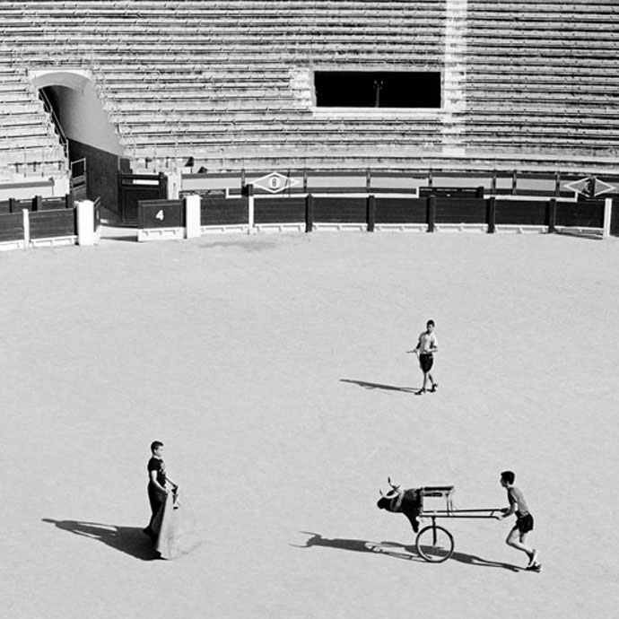 Minotaurus / Mitar Terzic 2-Playground