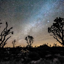 Night photography / Tom Lowe Joshua_Forest_Milky_Way