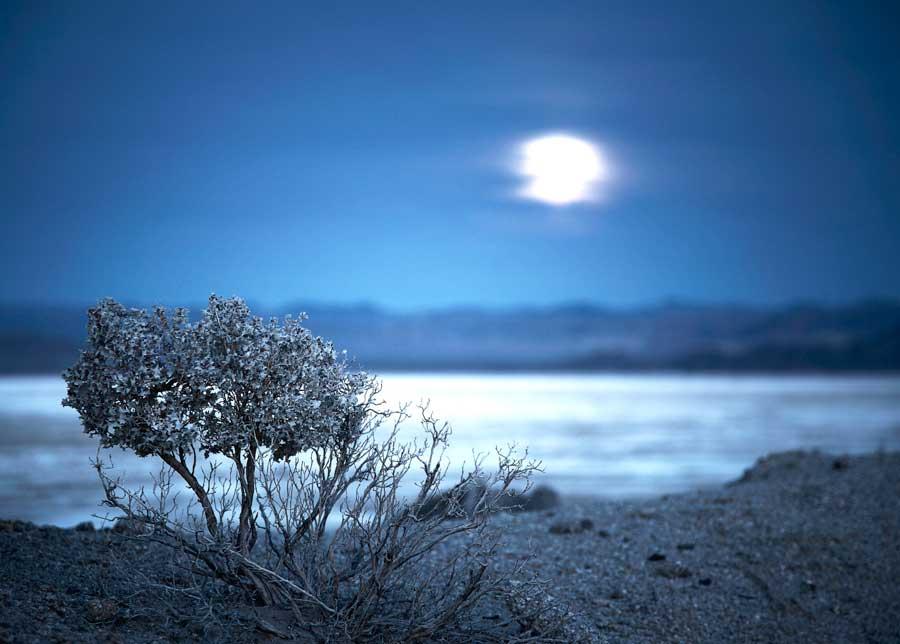Night photography / Tom Lowe Lake_Sage