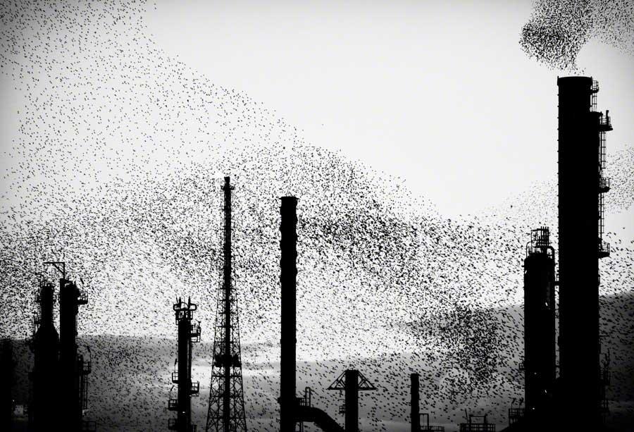 Refinery Triptych 02 Massimo Cristaldi