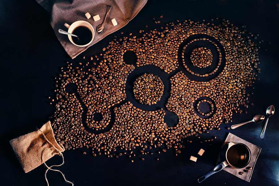 Coffee Harvest (Endless Book)