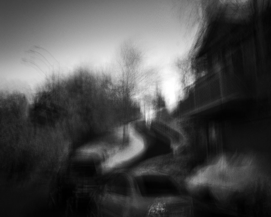 Suburban Observations by Nathan Wirth