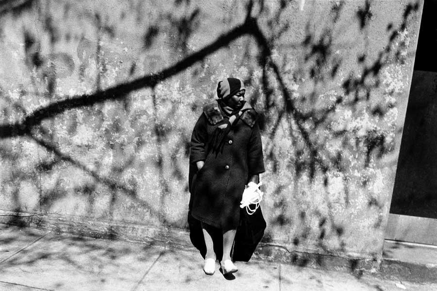 tree shadow lady