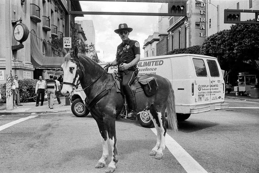 Edward Yanowitz mounted policeman