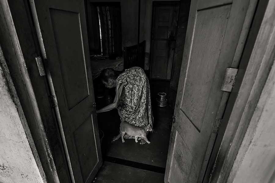 Joydeep Mukherjee / Joydeep _16