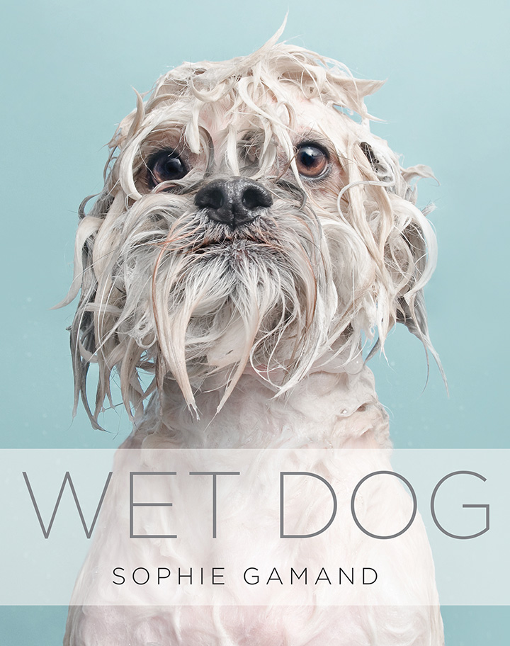 Wet Dog Book by Sophie Gamand