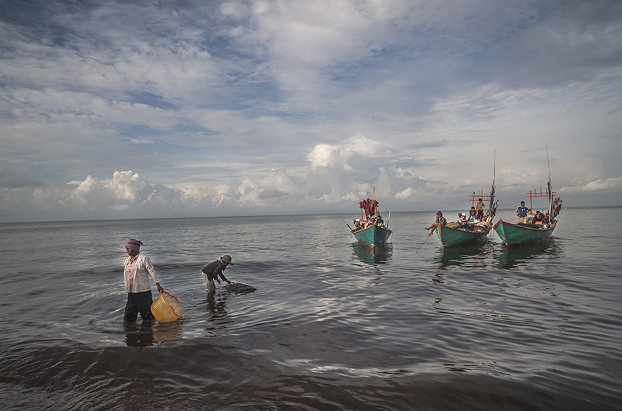 Although for the past ten years its fate begun to slowly change towards commercial fishing, the fishing community of the small village of Kep in Cambodia had been a role model of sustainable fishing. The image depicts two wives of the fishermen, one arriving after supplying them a basket full of meal packs and another taking a look at a bamboo cage full of crabs, one of the many that the fishermen managed to harvest after one night out in the ocean. The big paradox behind this image is that the fishermen, instead of coming home to rest and spend time with their families after a well earned journey, they are waiting for their food, gasoline and water supply to make it out again into the ocean. Originally, the sustainable foundations of the community were based on the fact that they fished to survive, and although they also needed to trade or sell some of the fishing surplus to the market, the fishermen lived a calm life and spent at the ocean only the necessary hours to make it possible. By fishing different species at different times of the year, they were giving time for the previously fished species to recover. Today , the fishing trend of the community has slowly ceased to fish different species and centered themselves almost exclusively in the fishing of the crab. The reasons were clear, since the fishermen found out that their waters were extensively populated by different species of crab and all of them reached an extremely high market value, not only in Cambodia but in the South East Asian markets, it became much more profitable to center their captures fishing exclusively crabs, disregarding the fishing of other species to a considerable extent. The once peaceful life of the community has taken a wild rhythm and while the fishermen spend most of their time fishing at the ocean, their wives will spend it making artisanal fishing traps or selling the crabs at the market for increasing their surplus profits.