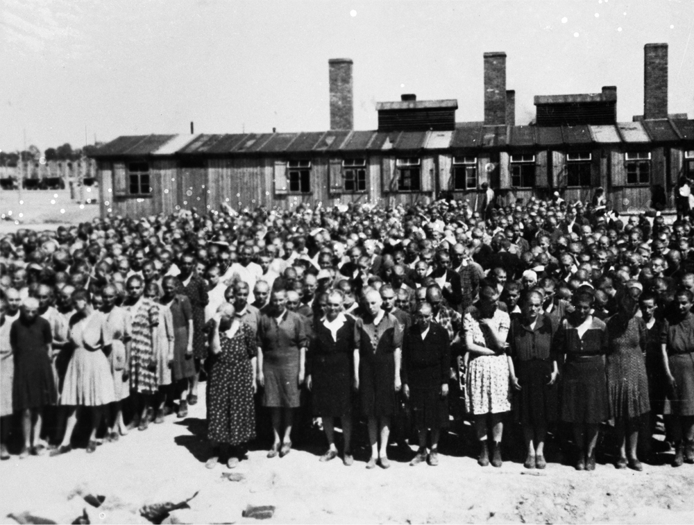 Auschwitz Album. Assignment to labour camp, Lili Jacob at roll call (in the middle of the first row, seventh from the right), 1944