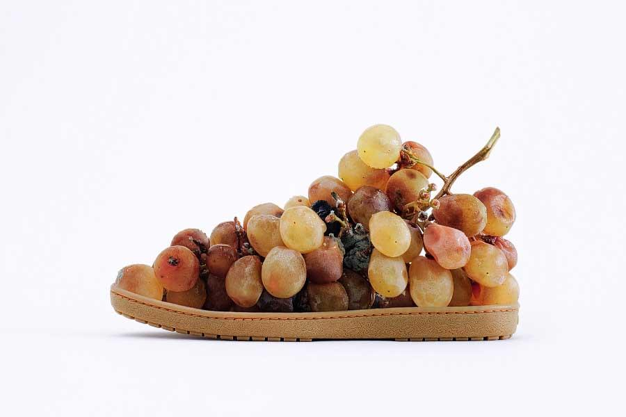 1-GrapesShoe_JoseLaino