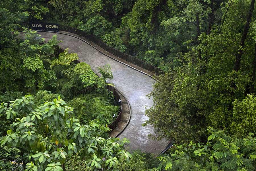 Slow DownSentosa IslandSingapore 2011