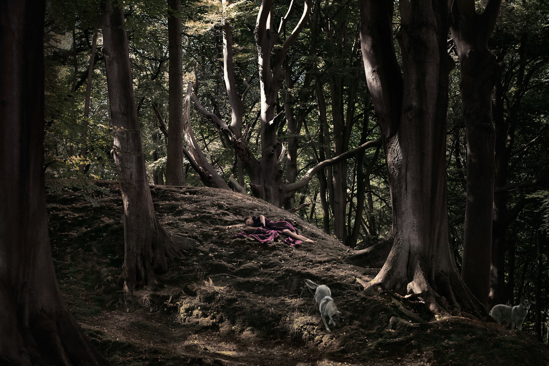 Woodland_Sorrow
