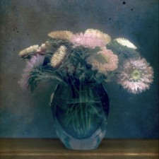 ASTERS_IN_GLASS_VASE_WITH_SHEARS_Michel_van_Weegberg
