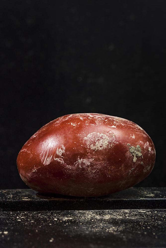Amorosino Francesco_Migrant Tomatoes_05