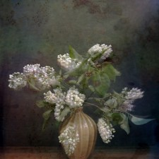 WHITE_LILACS_WITH_WOODEN_BALLS_Michel_van_Weegberg