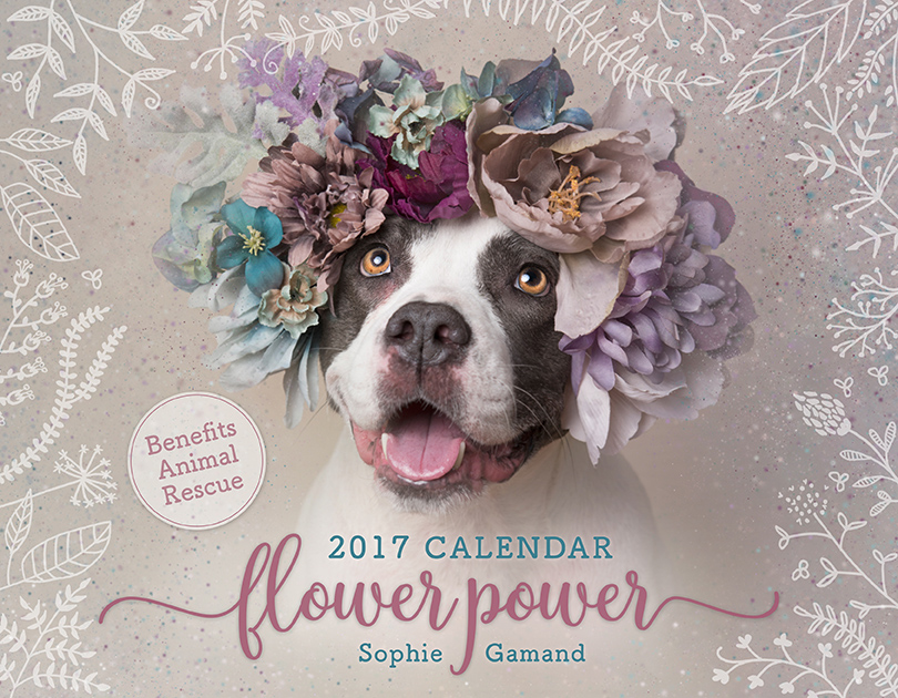 2017 Flower Power CoverL