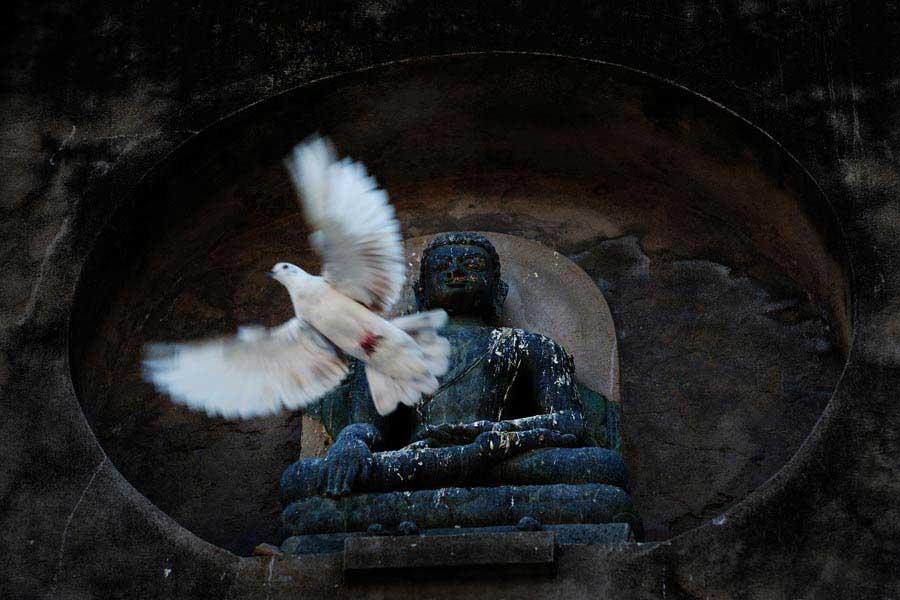 Bodh Gaya ; Meditation / Viet Van Tran