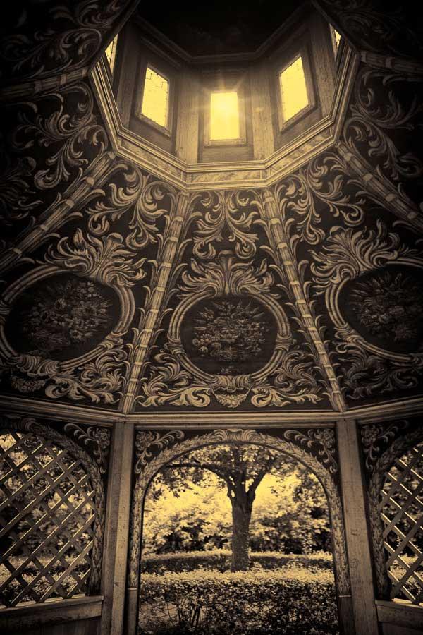 Portals | Olga Rook