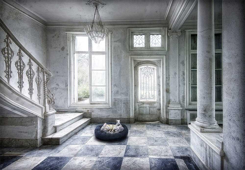 Panier | Lost memories | Marcel van Balken