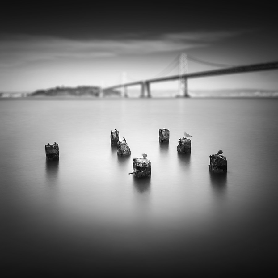 Bay Bridge New York | AQAL Views | Pygmalion Karatzas